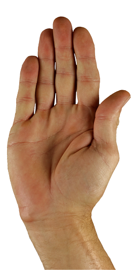 hand-1006422_1920.png
